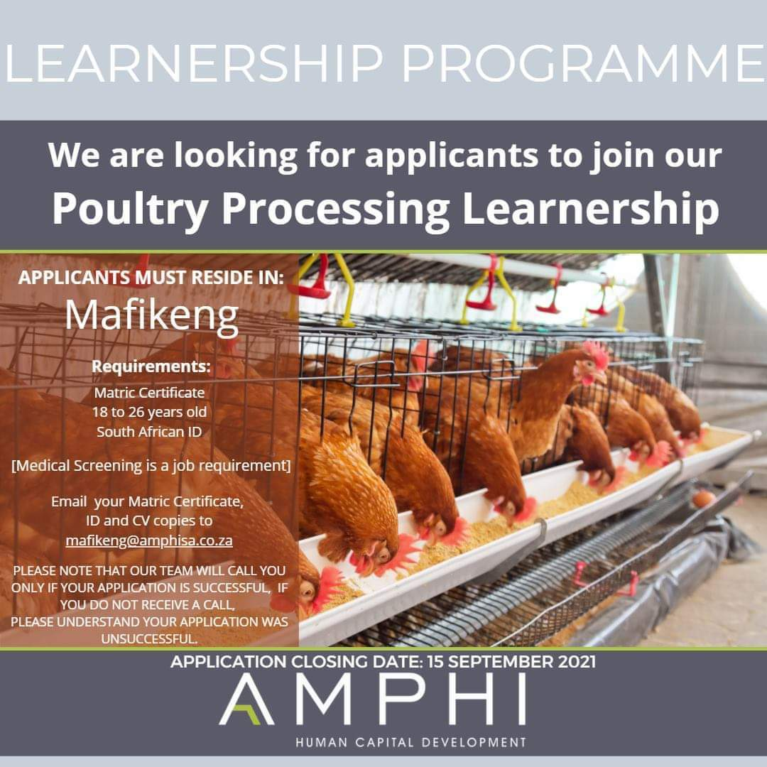 Amphi Learnership programme 2022